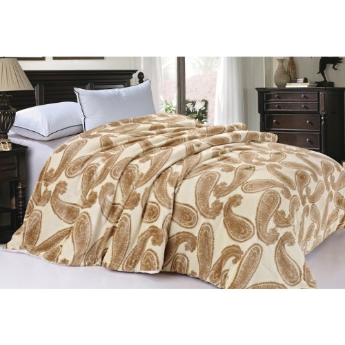 BNF Home Soft and Thick Faux Fur Sherpa Backing Bed Blanket (Amphora Big Paisley/Queen/84×92″)